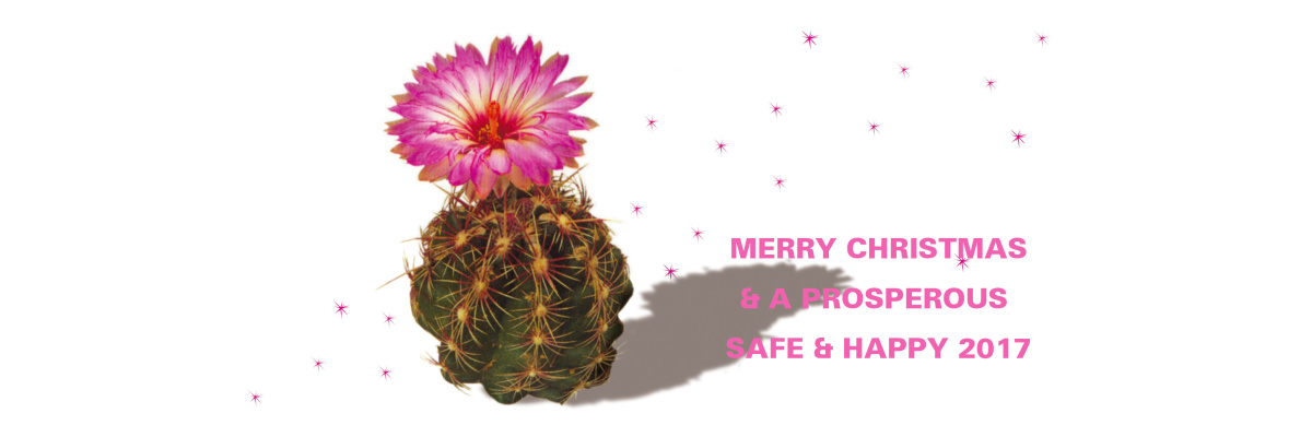 Prosit Neujahr -