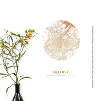 Belfast Map circle